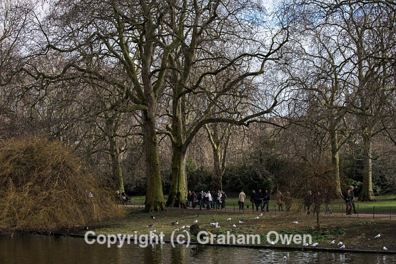 St James Park-080 - St James' Park Westminster London