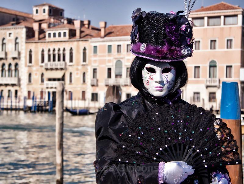 Black Orchid2 - Venice