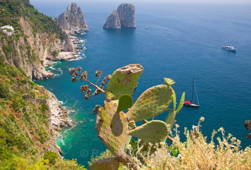 Capri - European Landscapes