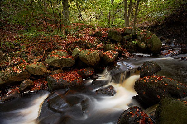 Padley Gorge - Peak District