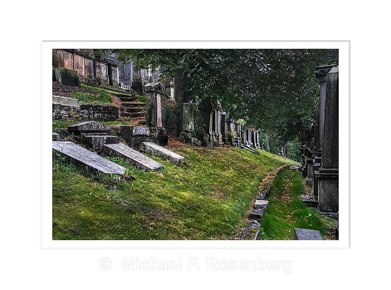 Dreaming of Green Fields Everywhere, Necropolis, Glasgow Scotlan - Scotland, UK