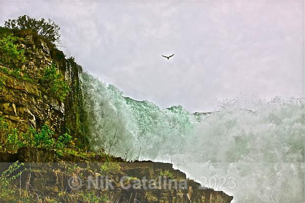 Wild & Free - Rushing Waters