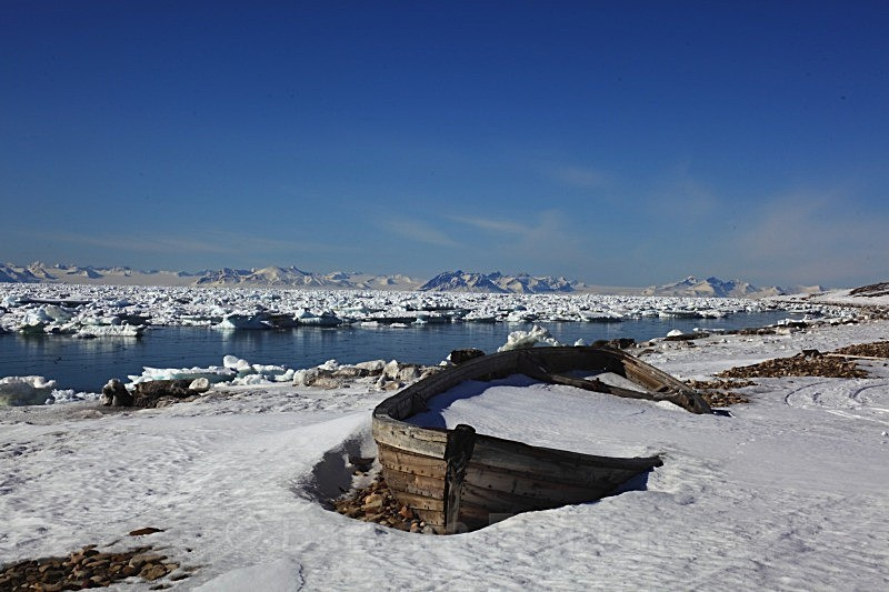 Adventfjorden 7187 - Winter in the daylight