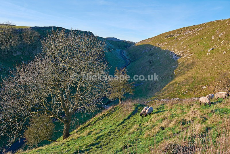 Dowel Dale - Southern Peak District - Peak District Landscape Photography Gallery