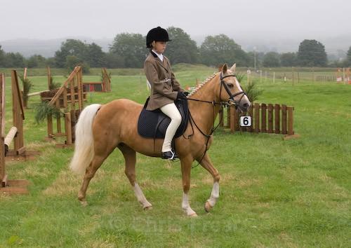 1 - Moniaive Horse Show 2008