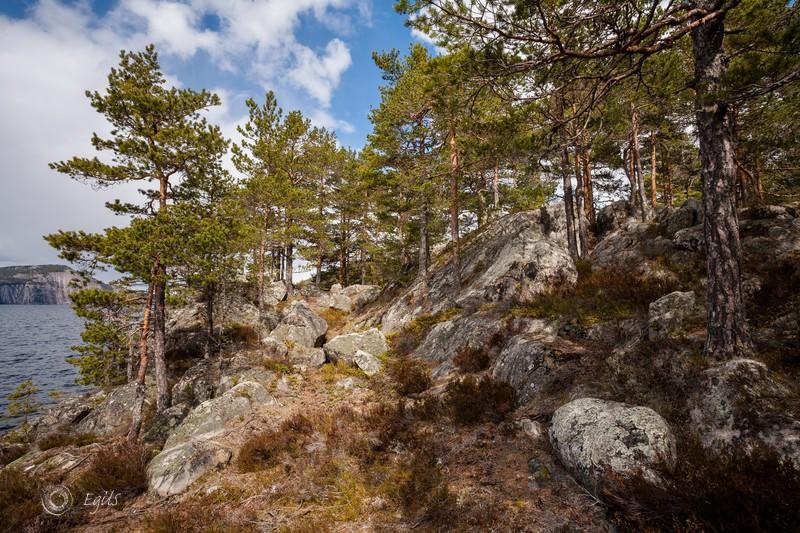 Nisser 20150502-IMG_8025_5 - Norske landskap