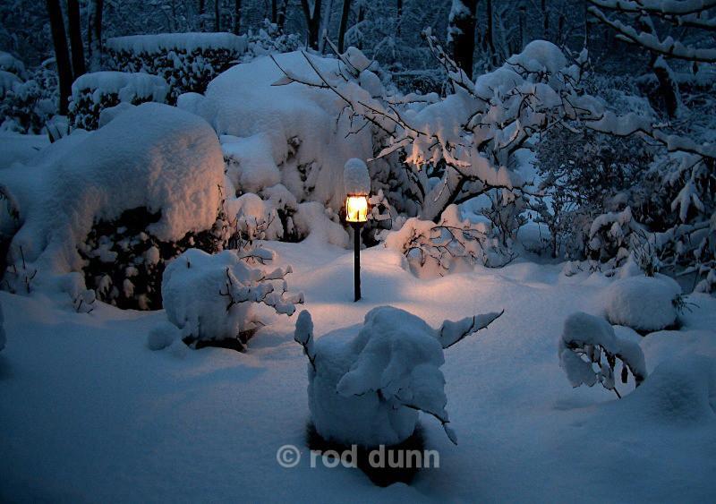 Lamp-lit winter garden - Peak District