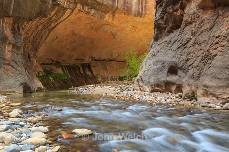 Bend in Zion Narrows - Utah