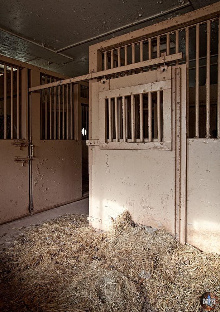 Catskill Game Farm (Catskill, NY) | Animal Pen - Catskill Game Farm