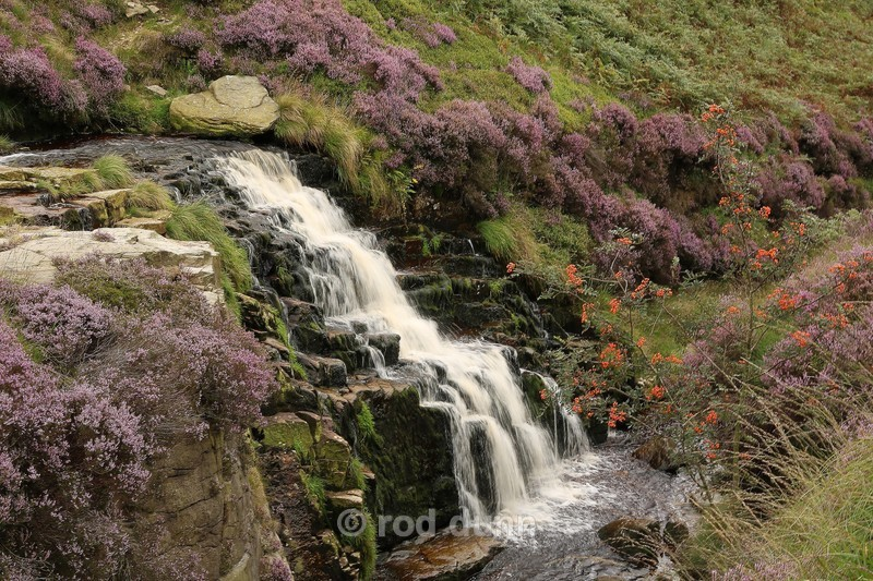 Crowden Little Brook - Peak District