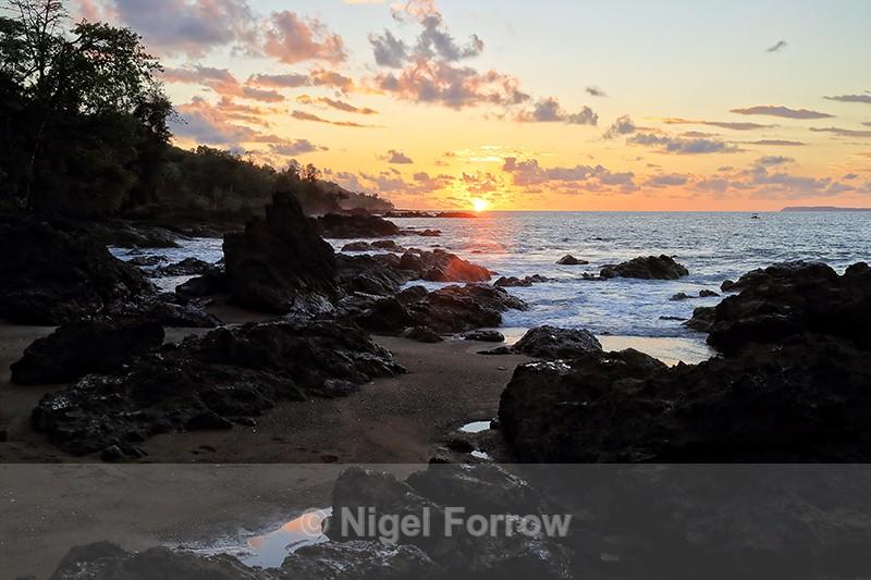 Sunset Beach, Copa de Arbol, Osa Peninsula, Costa Rica - Costa Rica
