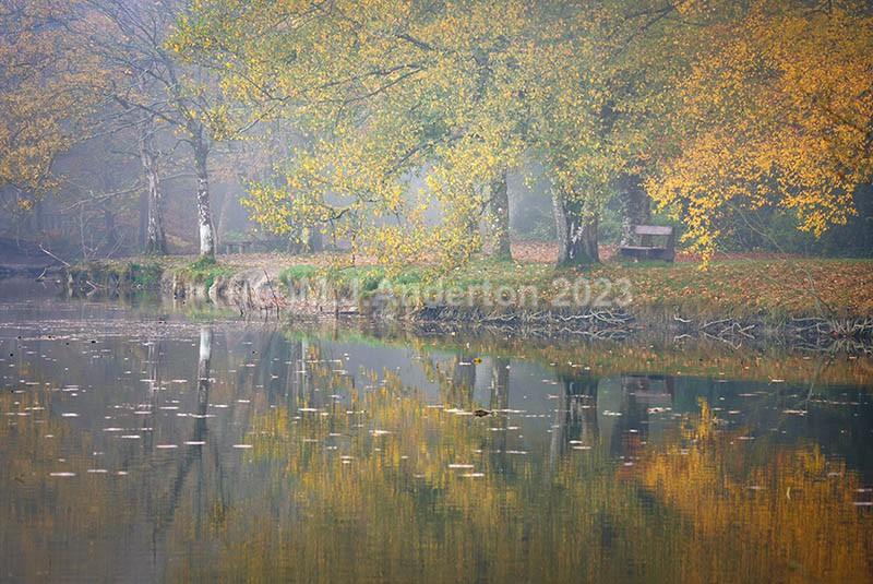 Donadea Reflections - Co.Kildare.