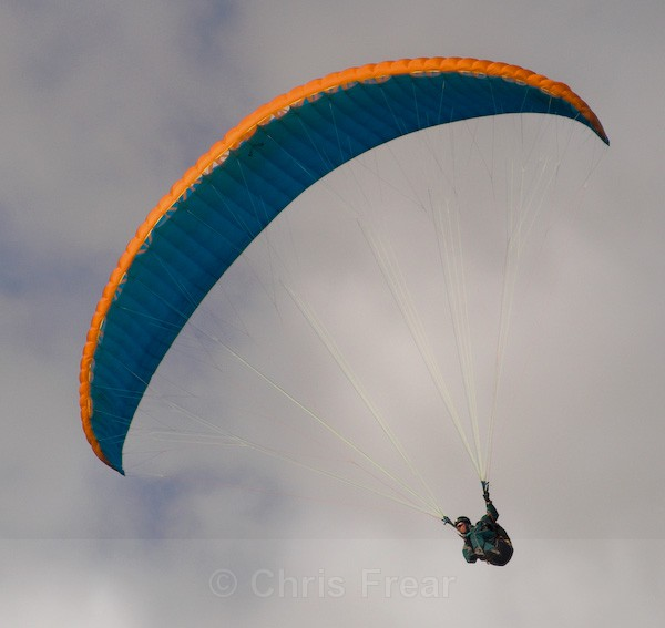 Paraglider - Sports/Action Images