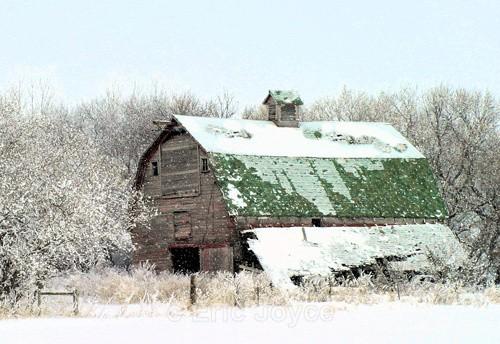 December Snow - Barns & Remnants