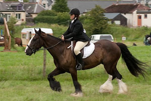 36 - Moniaive Horse Show 2010