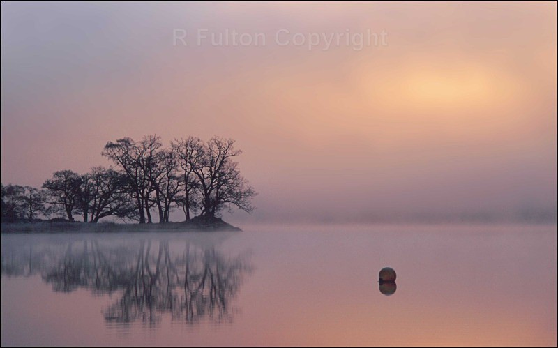 Rising Mist - Landscapes