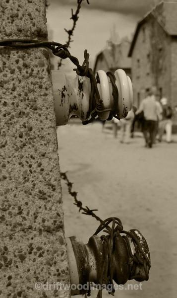 Auschwitz fence detail and buildings sepia - Auschwitz/Birkenau