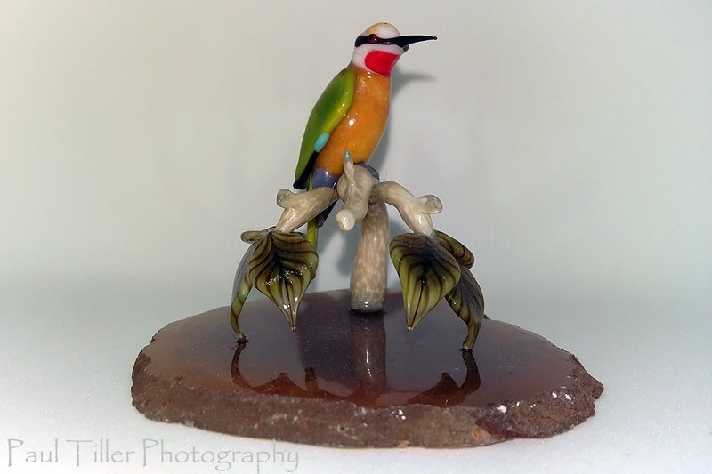 White fronted bee-eater - The art of glass