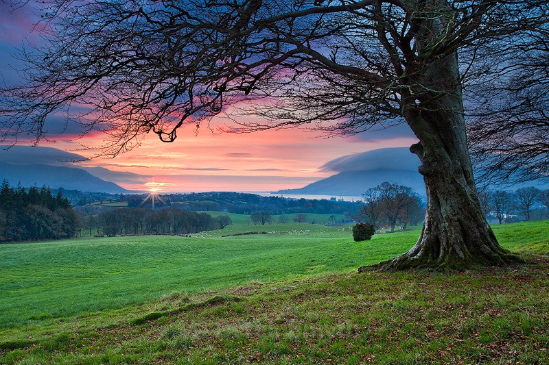 Carlingford Lough Sunrise