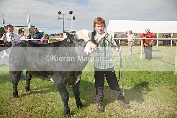 _MGN3290 - Royal Meath Show Trim Co Meath