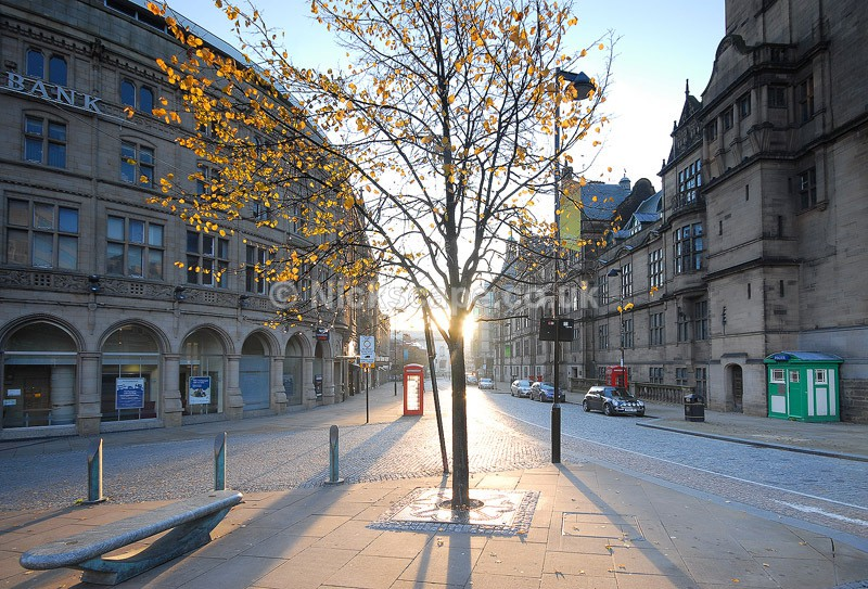 Autumn in Sheffield City Centre - Sheffield Town Hall at Dawn - Yorkshire