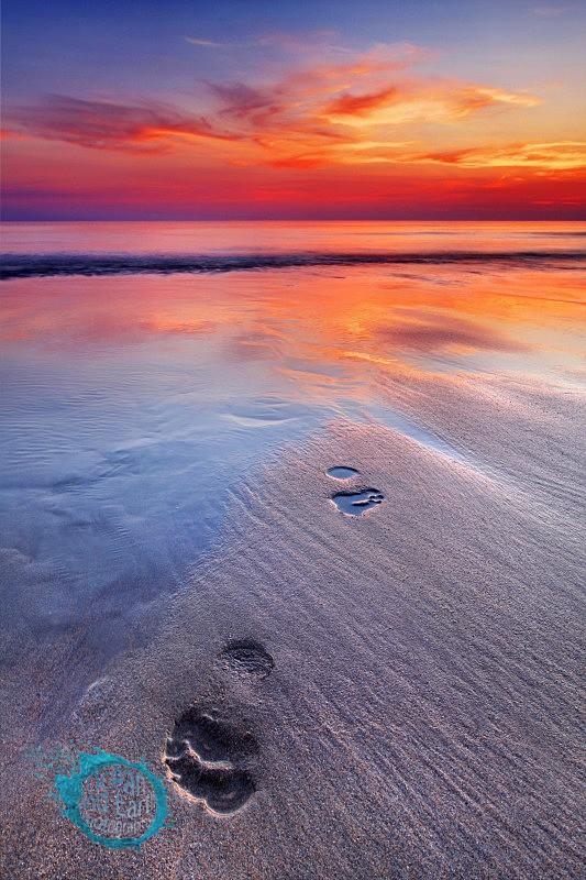 Footprints - Seascapes