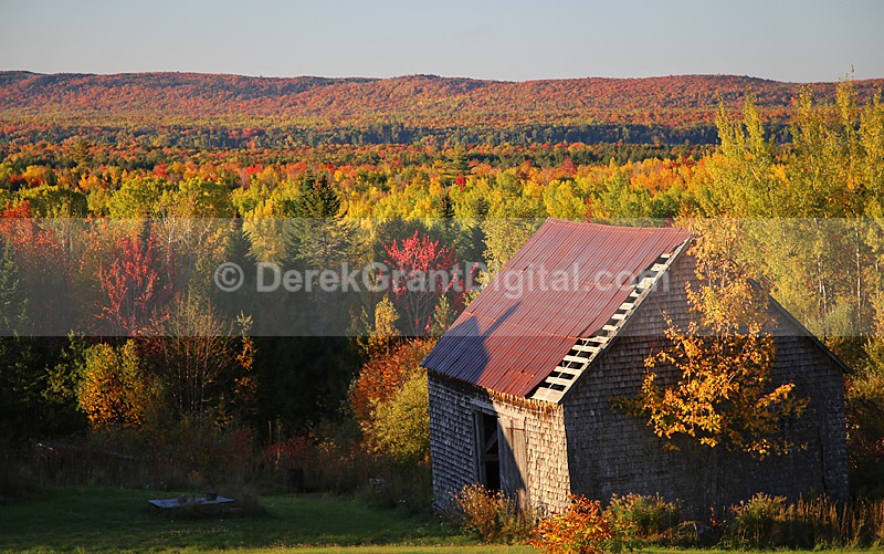 Autumn Foliage New Brunswick Old Barns of Canada - Old Barns & Buildings