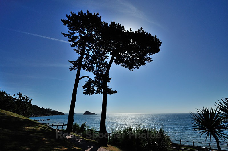 TQ111 - A beautiful morning at Meadfoot viewed from the Osborne - Greetings Cards Meadfoot Beach and Ansteys Cove Torquay
