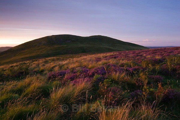 Yeavering Bell - Northumberland - Walk Into Prehistory