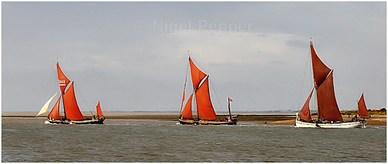 Racing Trio ( 2 ) - Colne Barge and Smack Race