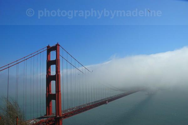 San Francisco Golden Gate Bridge - San Francisco