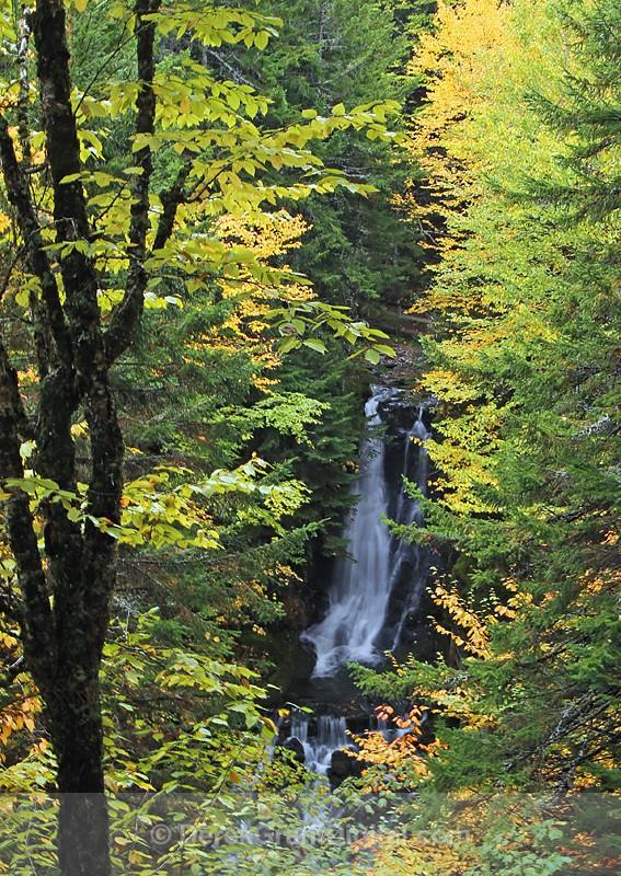 Dickson Falls Fundy National Park New Brunswick Canada - New Brunswick Landscape