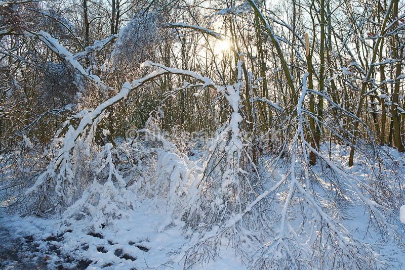 Sheffield Snowy Winter Scene   Yorkshire Landscape Photography