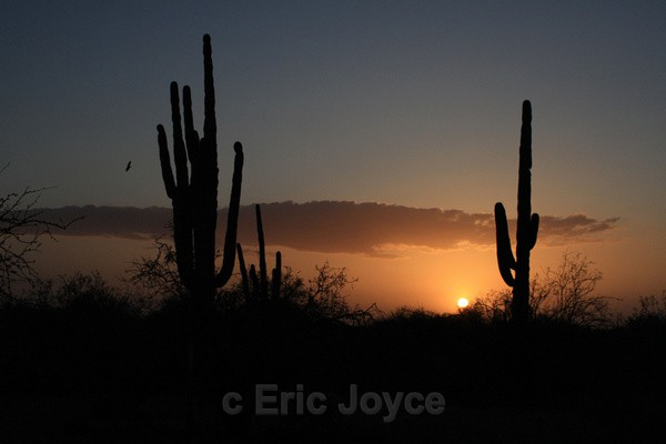 Tucson sunset - Tuscon, Arizona