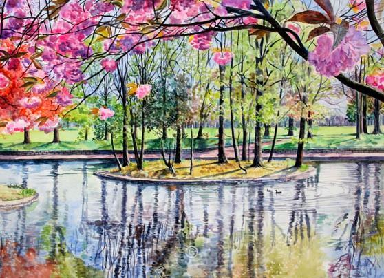 Spring, Duthie Park. - Jane Pettigrew D.A.
