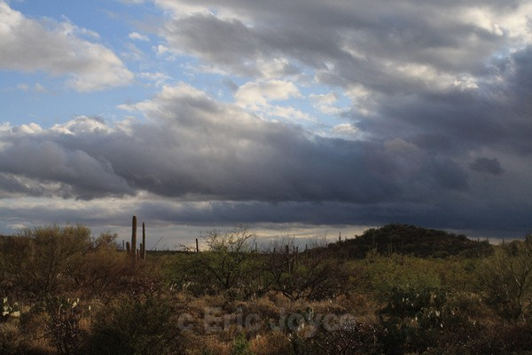 Desert Storm - Tuscon, Arizona