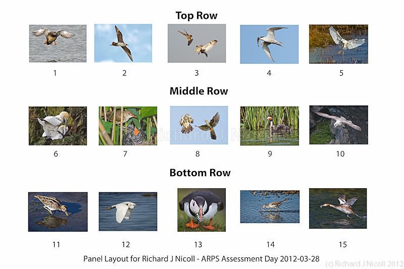 ARPS Panel - ARPS Panel