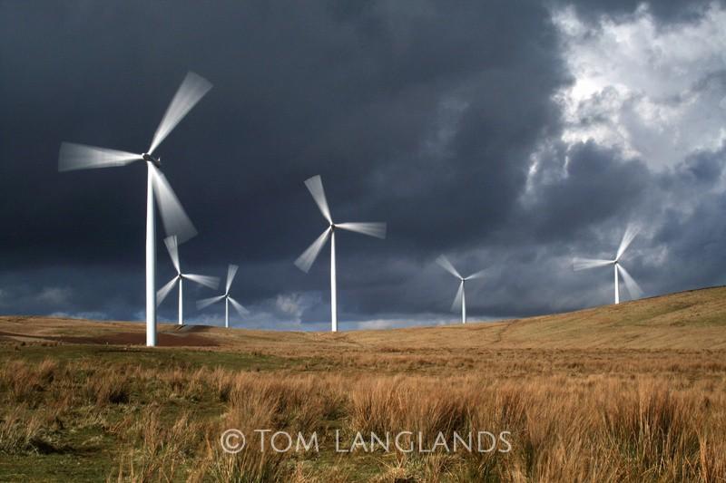 Harvesting the Wind - Landscapes