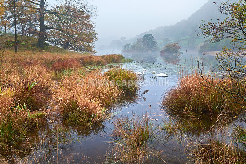 Dawn at Rydal Water in the Autumn Mist - Lake District National Park