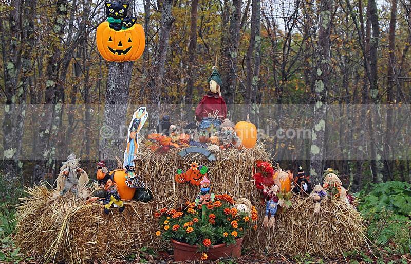 All Hallows' Eve Display - Autumn Festival