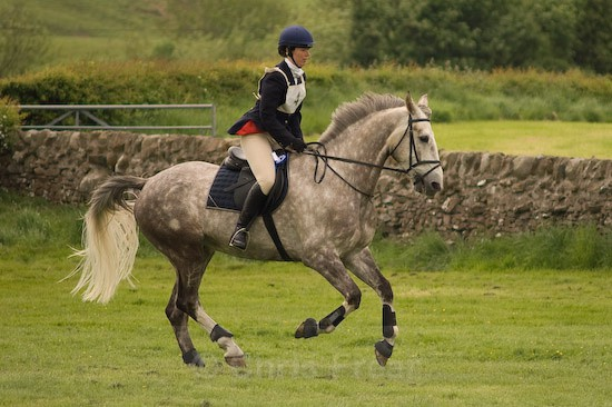 20 - Equestrian Photography