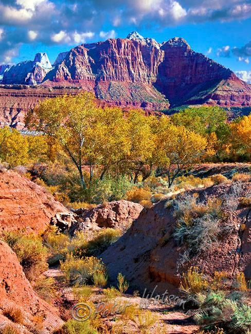 Springdale Zion National Park Utah - USA