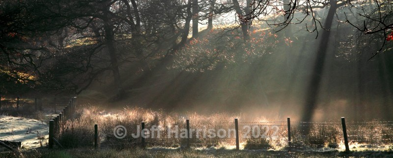 Sunbeams in a wooded dell (image Riv 05) - Landscapes & Skies