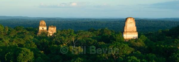 Temple Glow - Tikal