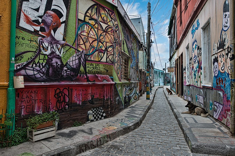 - Street Art & Stray Dogs - Valparaiso, Chile