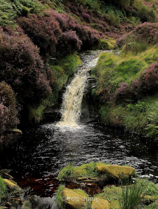 Blackden Brook Lower Fall - Peak District