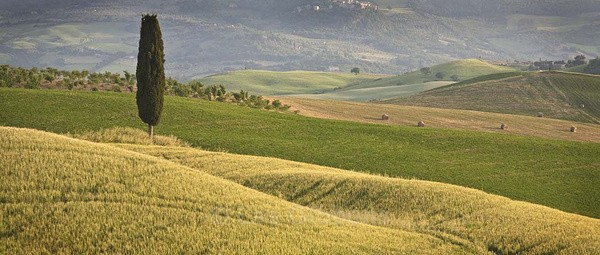 hills and bales - Tuscany