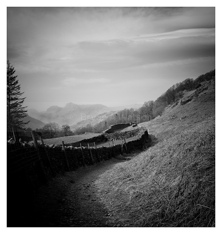 Wall - Landscapes