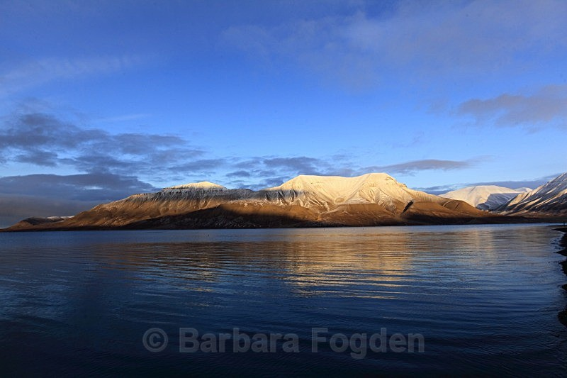 Hiortfjellet 2623 - Colours of Svalbard