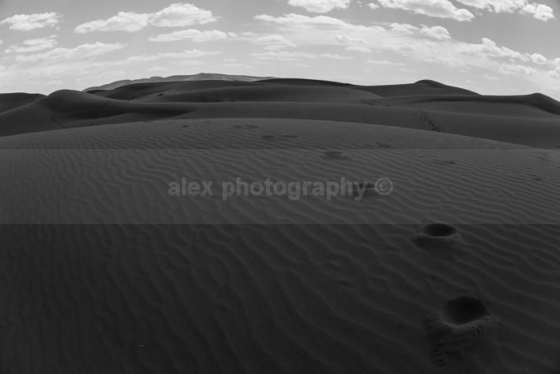 - Landscape & Seascape